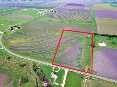 Taylor Farm Pending - Taking Backups: 600 Fm 619