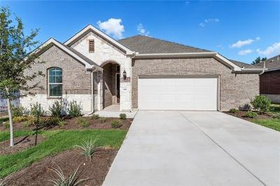 Leander Single Family Home For Sale: 708 Sunny Brook Dr