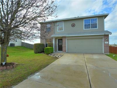 Kyle Single Family Home For Sale: 233 Prairie Verbena Dr