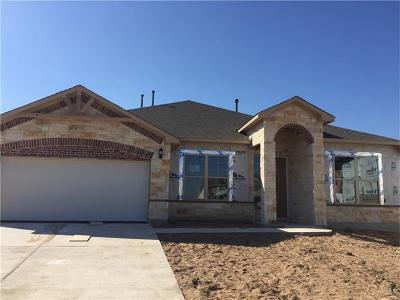 Georgetown Single Family Home For Sale: 104 Millard Cv