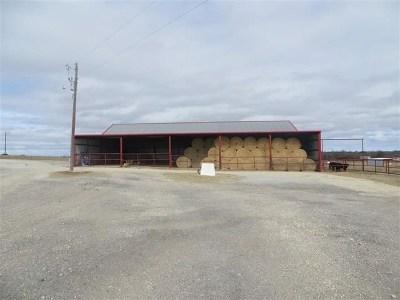 Farm For Sale: 1100 Fm 2832