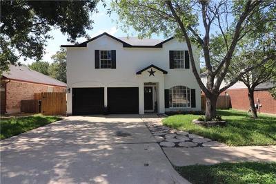 Leander Single Family Home For Sale: 15017 Big Falls Dr