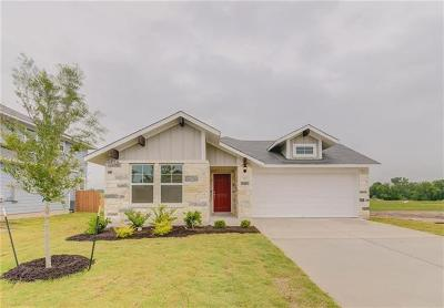 Elgin Single Family Home For Sale: 119 Four Star Dr