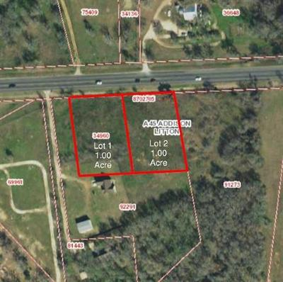 Bastrop County Residential Lots & Land For Sale: Lot 1 State Highway 21 W