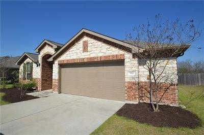 Kyle Single Family Home For Sale: 504 Evening Star Dr