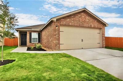 Kyle Single Family Home For Sale: 1374 Breanna Ln