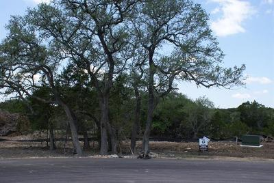Dripping Springs Residential Lots & Land For Sale: Calvary Cove Lot 22