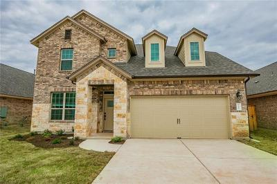 Manchaca Single Family Home For Sale: 12620 Iron Bridge Dr