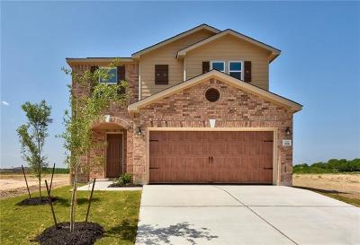 Kyle Single Family Home For Sale: 388 Gustaf Trl