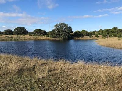 Dripping Springs Farm For Sale: 6500 W Highway 290