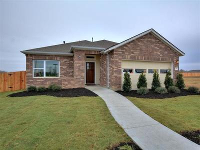 Hays County Single Family Home For Sale: 788 Bridgestone Way