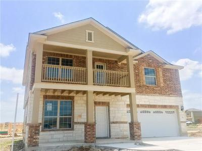 Hays County Single Family Home For Sale: 112 Gray Wolf Dr