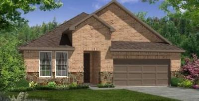 Leander Single Family Home For Sale: 4401 Big Tree Trl