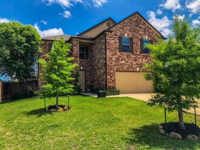 Kyle Single Family Home For Sale: 196 Apricot Dr