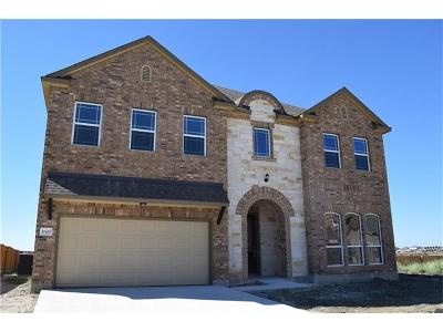 Pflugerville Single Family Home For Sale: 20400 Shellduck Dr