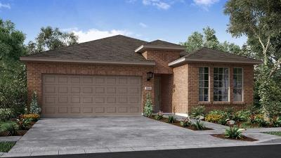 Round Rock Single Family Home For Sale: 5103 Cassia Way
