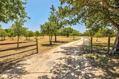 Georgetown Single Family Home For Sale: 225 Young Ranch Rd