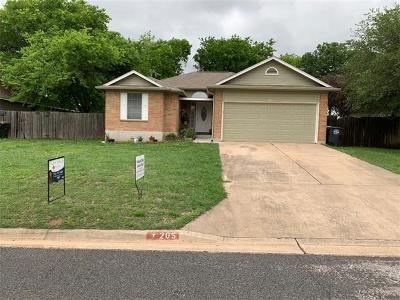 Single Family Home For Sale: 205 Wisteria Dr