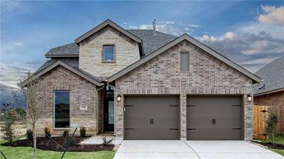 San Marcos Single Family Home For Sale: 357 Lacey Oak Loop