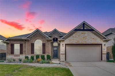 Round Rock Single Family Home For Sale: 4507 Miraval Loop