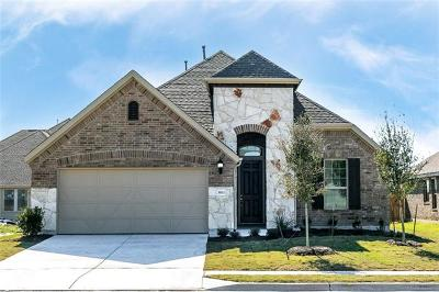 Pflugerville Single Family Home For Sale: 3813 Eland Dr