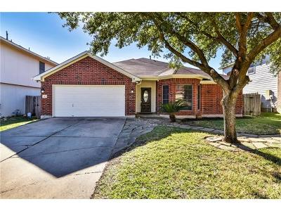 Round Rock Single Family Home For Sale: 913 Satellite Vw