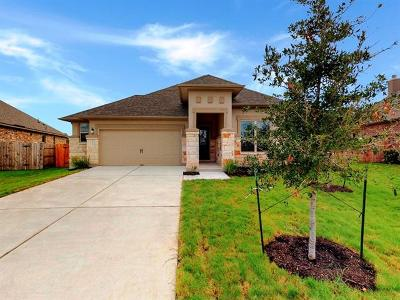 Hays County, Travis County, Williamson County Single Family Home For Sale: 130 Topaz Cir