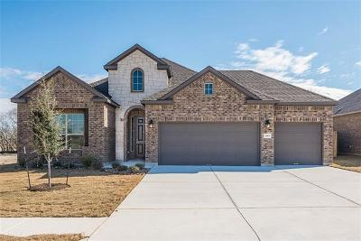 Pflugerville Single Family Home For Sale: 20105 Navarre Ter