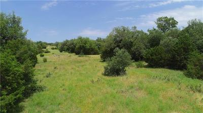 Liberty Hill Residential Lots & Land For Sale: 311 Augusta Place Dr