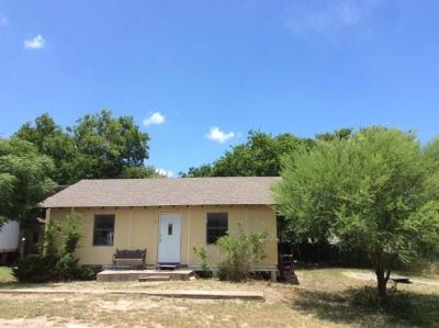 Georgetown Single Family Home For Sale: 350 Private Road 910