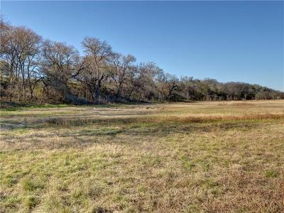Liberty Hill Residential Lots & Land For Sale: 120 River Rd