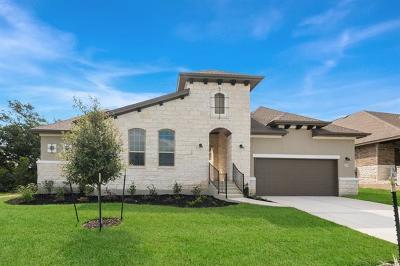 Austin Single Family Home For Sale: 222 Jacksdaw Dr