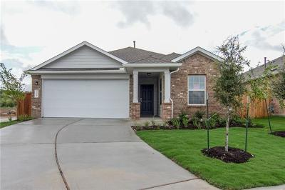 Hays County, Travis County, Williamson County Single Family Home For Sale: 7305 Spring Ray Drive