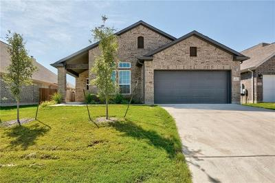 Buda Single Family Home For Sale: 497 Esperanza Dr