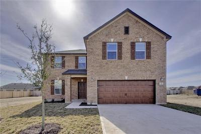 Leander Single Family Home For Sale: 1228 Backcountry Dr