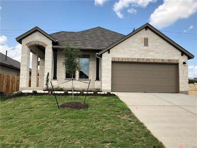 Austin Single Family Home For Sale: 1008 Goldilocks Ln