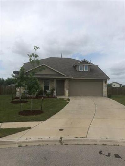 Hutto Single Family Home For Sale: 114 Esparza Ct
