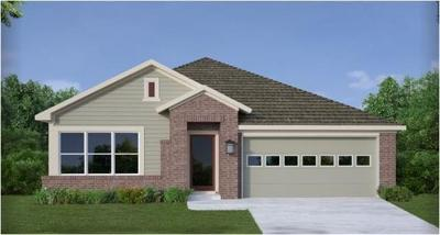 Buda Single Family Home For Sale: 746 Bridgestone Way