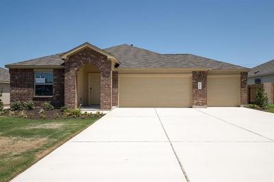 Kyle Single Family Home For Sale: 224 Juniper Springs Rd