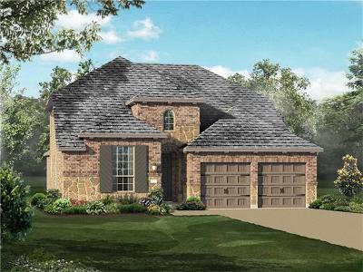 Round Rock Single Family Home For Sale: 3501 De Soto