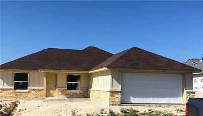 Burnet Single Family Home For Sale: 117 Ellis Ct