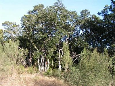 New Braunfels Residential Lots & Land For Sale: 1382 Merlot