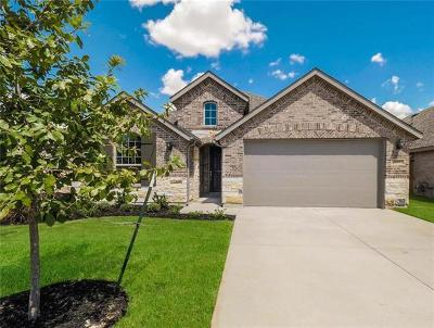 Round Rock Single Family Home For Sale: 4149 Presidio Ln