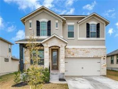 Pflugerville Single Family Home For Sale: 17224 Gabbro Dr