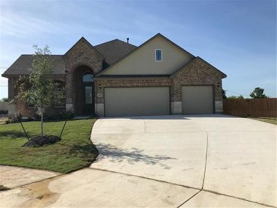 Pflugerville Single Family Home For Sale: 4125 Godwit Dr