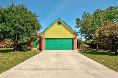 Kyle Single Family Home Pending - Taking Backups: 107 Briarwood Ct