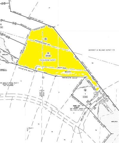 Leander Residential Lots & Land For Sale: 901 Rare Cat St