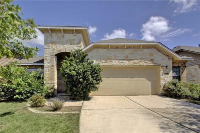 Travis County Single Family Home For Sale: 2212 Buffalo Tundra Dr