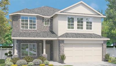Kyle Single Family Home For Sale: 491 Cibolo Creek Dr