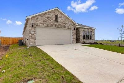 Manor Single Family Home For Sale: 12009 Texana Trl